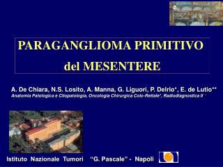 PARAGANGLIOMA PRIMITIVO  del MESENTERE