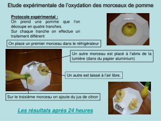 Etude exp rimentale de l oxydation des morceaux de pomme