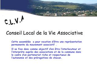 Conseil Local de la Vie Associative