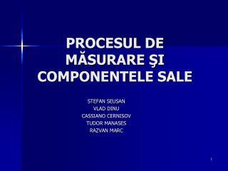 PROCESUL DE MASURARE SI COMPONENTELE SALE