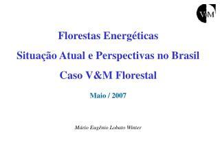 Florestas Energ ticas Situa  o Atual e Perspectivas no Brasil Caso VM Florestal