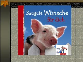 Ich w nsche Dir einen ganzen Korb voll Schwein bei allem, was Du noch vorhast....