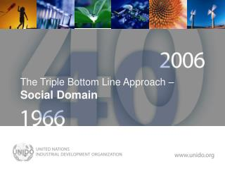 The Triple Bottom Line Approach    Social Domain