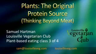 Plants: The Original  Protein Source  Thinking Beyond Meat