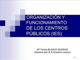 ORGANIZACI N Y FUNCIONAMIENTO DE LOS CENTROS P BLICOS IES