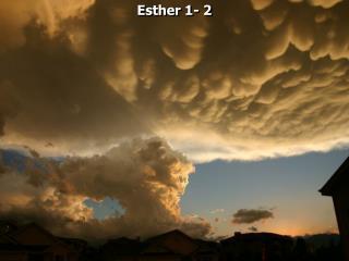 Esther 1- 2