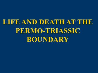 LIFE AND DEATH AT THE PERMO-TRIASSIC BOUNDARY