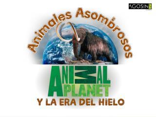 Del 27 de mayo al 27 de Junio en Mall Plaza Antofagasta