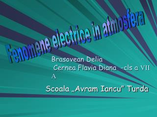 Brasovean Delia  Cernea Flavia Diana  -cls a VII A