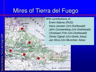 Mires of Tierra del Fuego