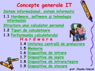 Concepte generale IT
