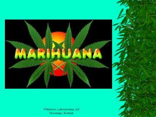 Cannabis : Waar het werkelijk om gaat  Frank Martens
