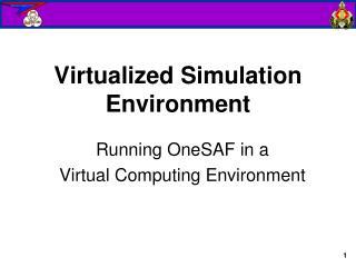 Virtualized Simulation Environment