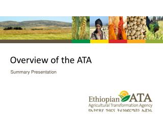 Overview of the ATA