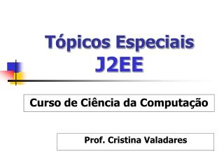 T picos Especiais J2EE
