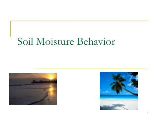Soil Moisture Behavior