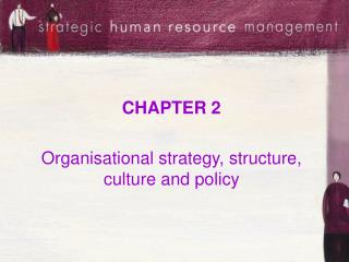 CHAPTER 2  Organisational strategy, structure, culture and policy