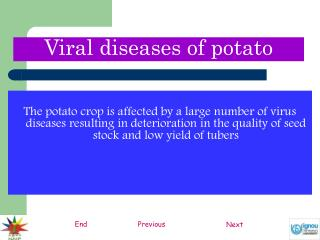 The potato crop is affected by a large number of virus diseases resulting in deterioration in the quality of seed stock