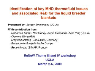Identification of key MHD thermofluid issues and associated RD for the liquid breeder blankets