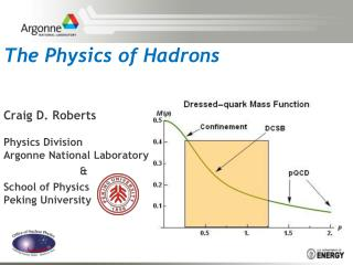 The Physics of Hadrons