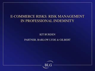 E-COMMERCE RISKS: RISK MANAGEMENT IN PROFESSIONAL INDEMNITY