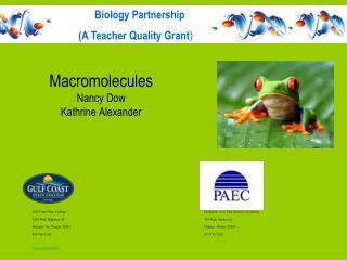 Macromolecules  Nancy Dow Kathrine Alexander