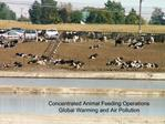 Concentrated Animal Feeding Operations Global Warming and Air Pollution