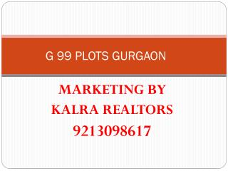 plots in gurgaon* 9873471133 *g99* 9213098617 * google
