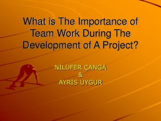 What is The Importance of Team Work During The Development of A Project