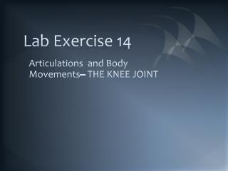 Lab Exercise 14