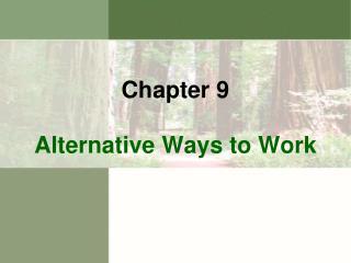 Alternative Ways to Work
