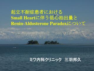 Small Heart Renin-Aldosterone Paradox