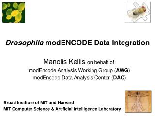 Drosophila modENCODE Data Integration