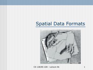 Spatial Data Formats
