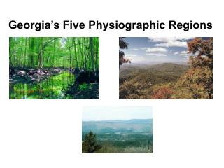 Georgia s Five Physiographic Regions