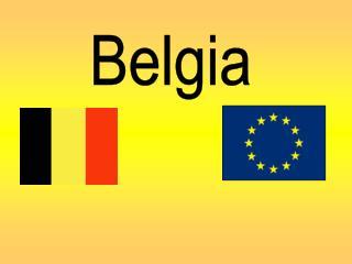 Limbi vorbite in Belgia: flamanda, franceza, germana Capitala: Bruxelles  Ziua independentei: 4 octombrie 1830 un guvern