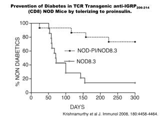 Prevention of Diabetes in TCR Transgenic anti-IGRP206-214 CD8 NOD Mice by tolerizing to proinsulin.
