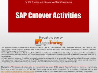 SAP Cutover Activities