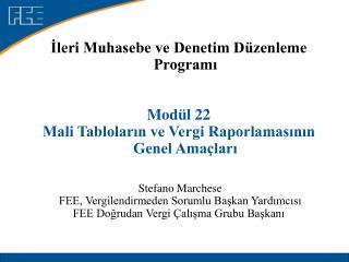 Ileri Muhasebe ve Denetim D zenleme Programi   Mod l 22  Mali Tablolarin ve Vergi Raporlamasinin Genel Ama lari      Ste
