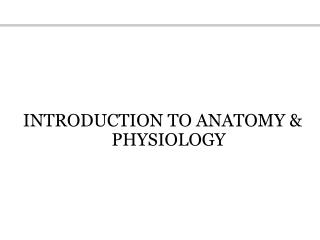 INTRODUCTION TO ANATOMY  PHYSIOLOGY