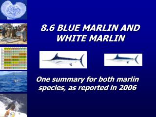 8.6 BLUE MARLIN AND WHITE MARLIN