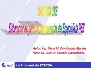 MAESTRIA GRH Elaboraci n del perfil de competencias del Especialista WEB