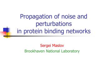 Propagation of noise and perturbations  in protein binding networks