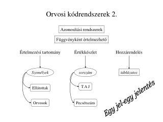 Orvosi k drendszerek 2.