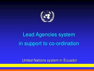 Lead Agencies system in support to co-ordination