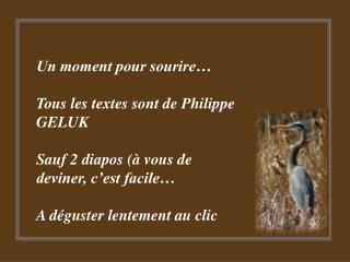 Un moment pour sourire   Tous les textes sont de Philippe GELUK  Sauf 2 diapos   vous de deviner, c est facile   A d gus
