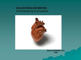 KOLESTEROLPATIENTEN Dokumentering av processen
