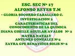 ESC. SEC N  17 ALFONSO REYES T.M