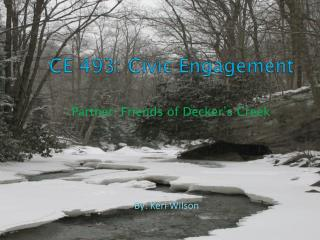 CE 493: Civic Engagement