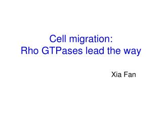 Cell migration: Rho GTPases lead the way